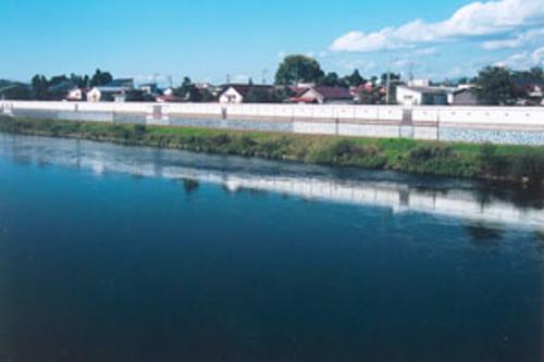 大石田町俯瞰図